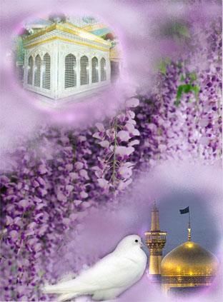 http://tadidareyar.persiangig.com/emam%20reza2.jpg