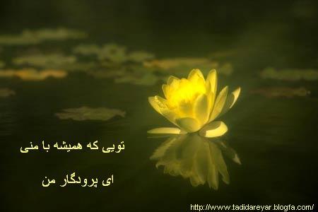 http://tadidareyar.persiangig.com/image/0_218.jpg